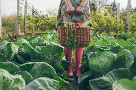 woman standing in garden holding a basket of vegetables