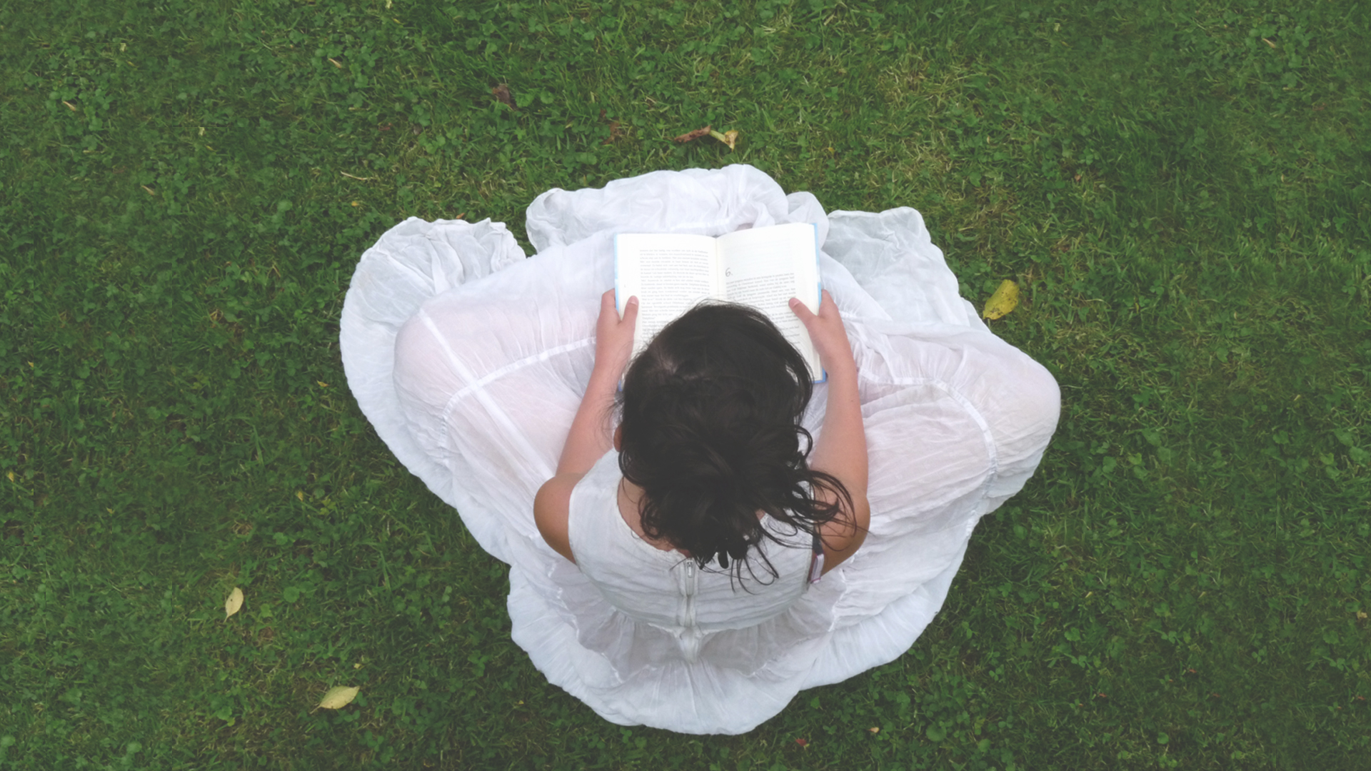 Girl sitting on the grass reading