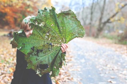 little girl hides behind big leaf