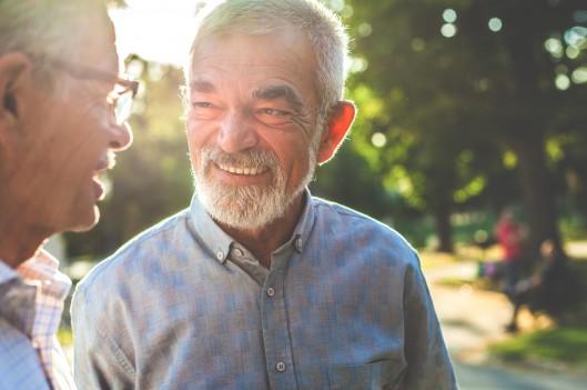 Senior gentlemen chatting in the park