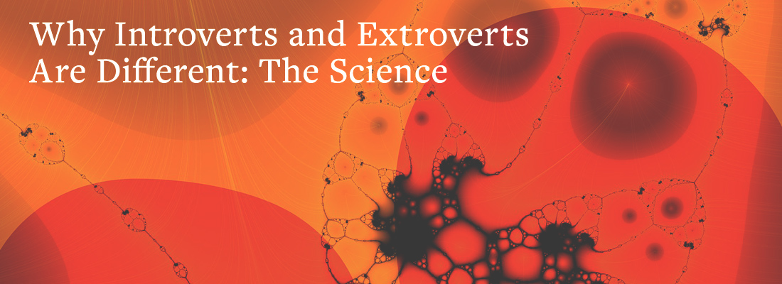 Two brains connected by biological strands | Why Introverts and Extroverts Are Different: The Science