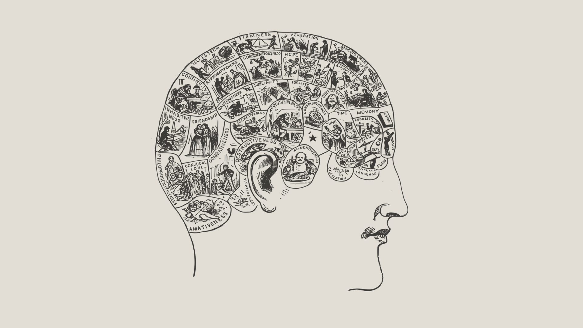 are some of the best doctors cerebral introverts