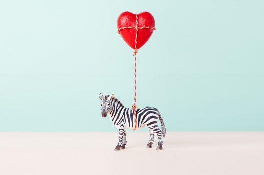 Zebra toy holding a red heart balloon