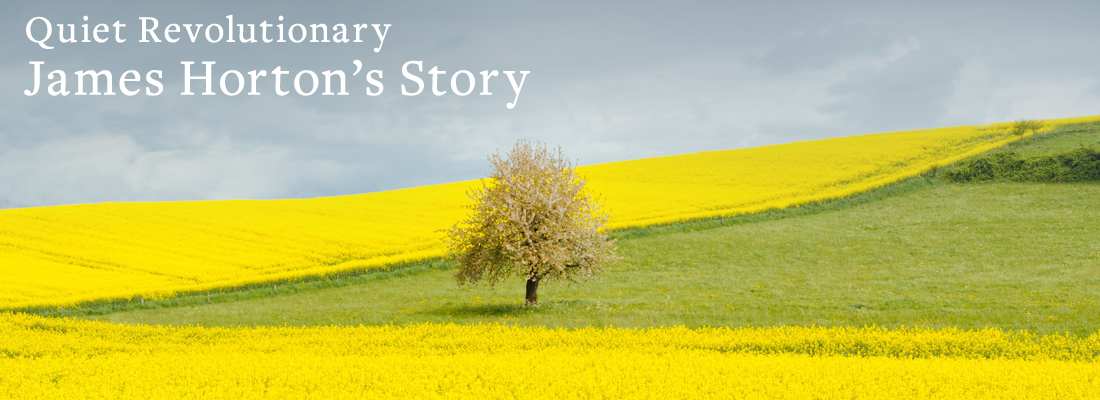 tree in a field | Quiet Revolutionary James Horton's Story