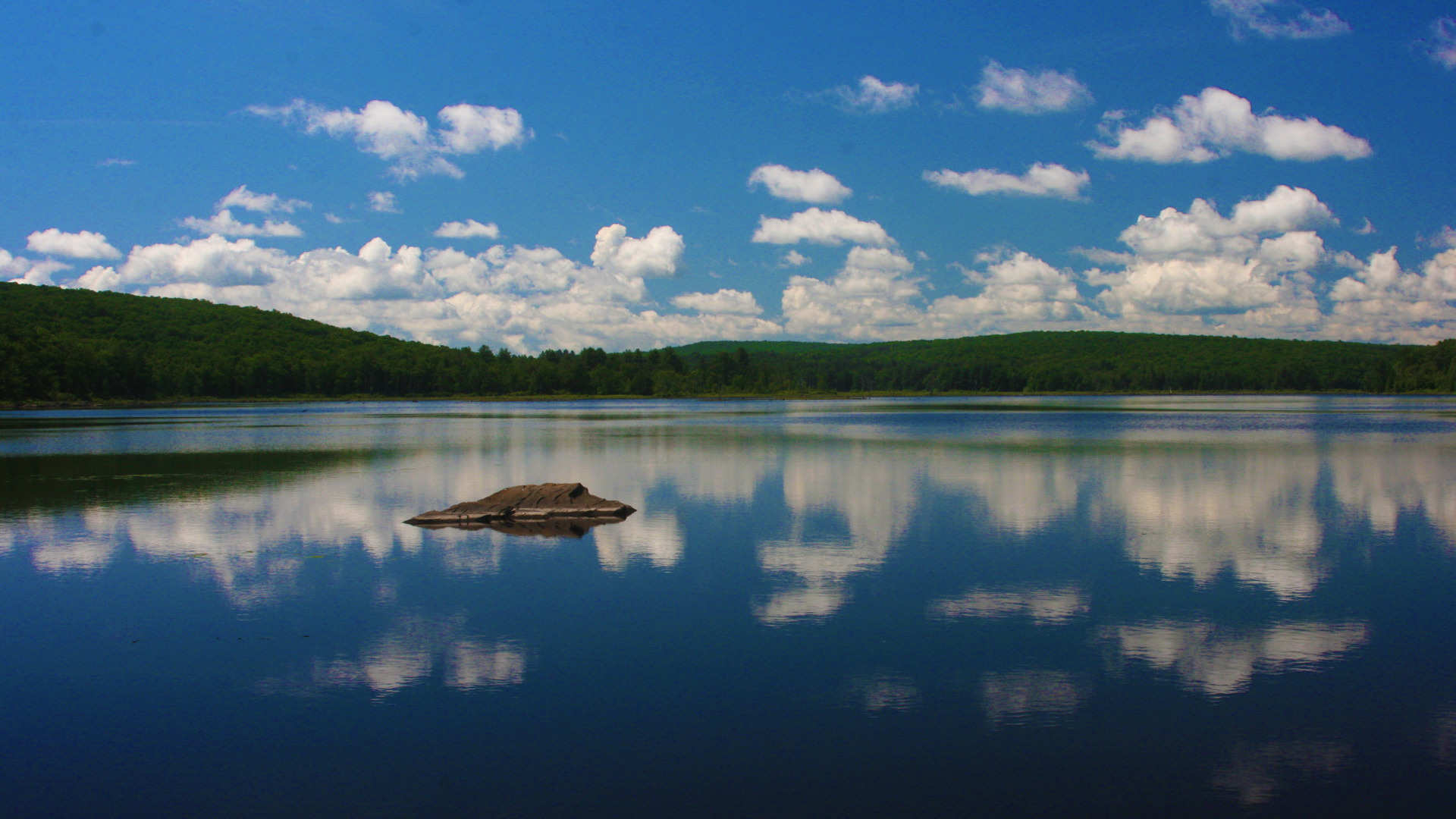 Still life lake reflection