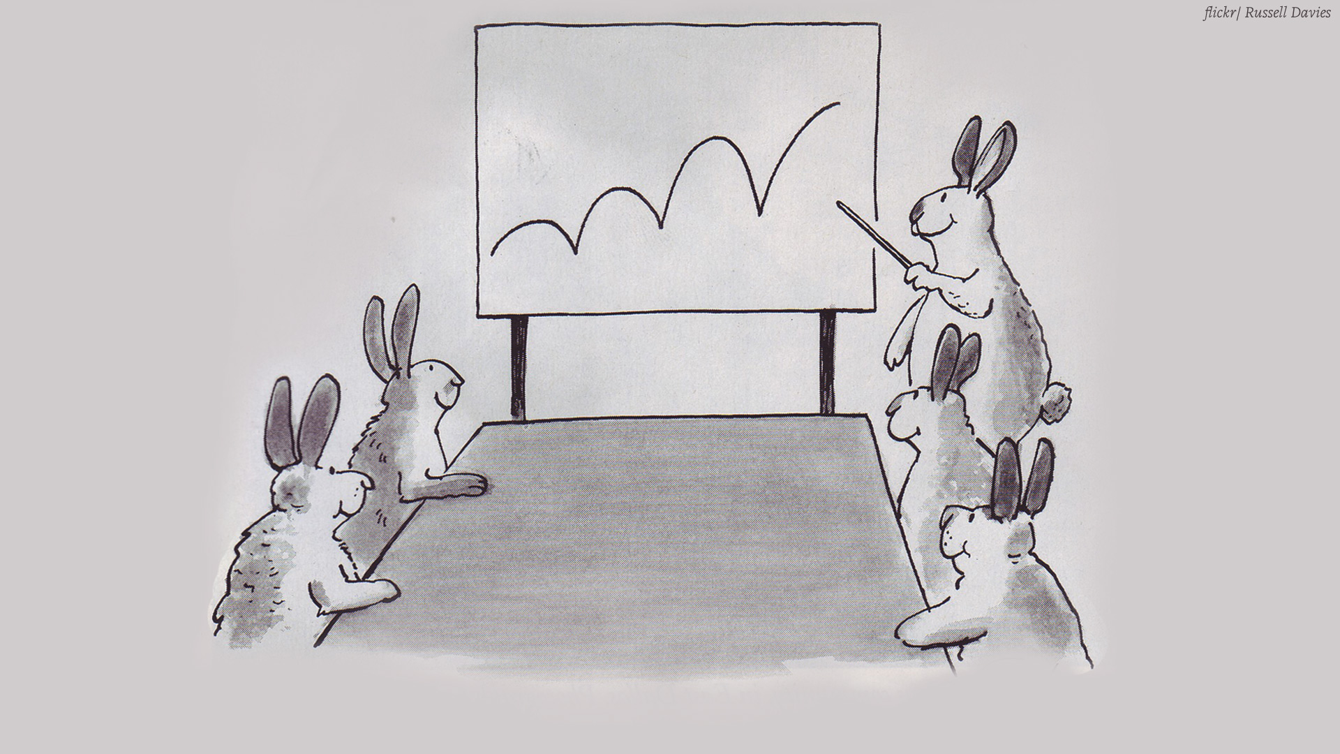 Bunnies making a presentation