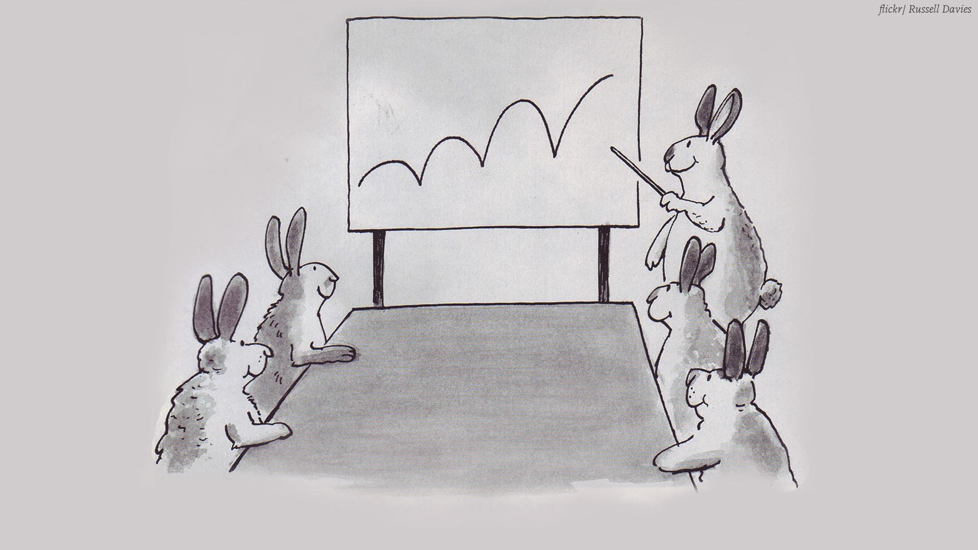 Bunnies making a presentation