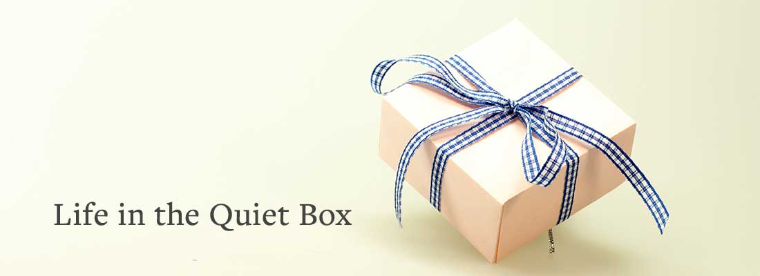 box with ribbon | Life in the Quiet Box
